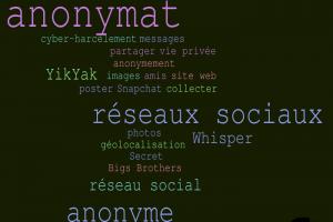 Les nouveaux réseaux sociaux séduisent grâce à l'anonymat des utilisateurs